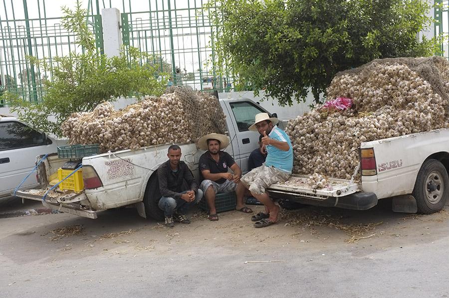 Nos voisins à Gabès : les vendeurs d'ail.